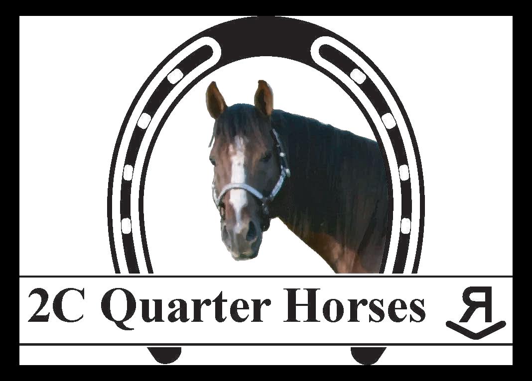 2C Quarter Horses